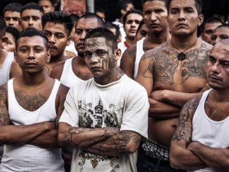 22 members of MS-13 gang arrested in California for murder and dismemberment of others