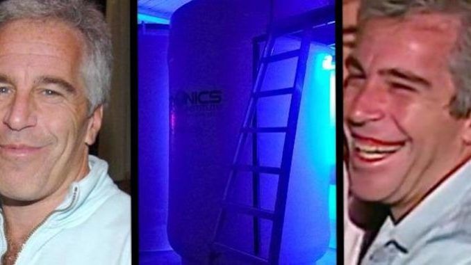 Jeffrey Epstein wanted his penis cryogenically frozen and vowed to plant his seed throughout human DNA