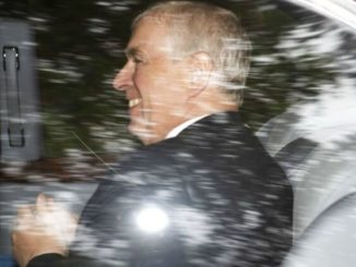 Flight logs show Epstein sex slave victim was connected to Prince Andrew