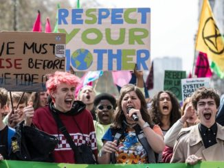 Only 8 percent of the public fully support Extinction Rebellion