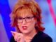 The View co-host Joy Behar said Monday Democrats should wait until they are elected before announcing plans to ban guns.
