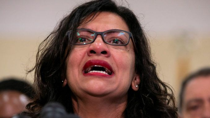 Ethics Committee expands probe into Rep. Rashida Tlaib after details emerge that she begged campaign to personally send donations to her