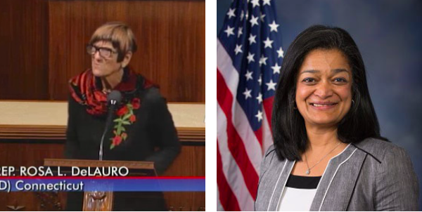 Rep. Rosa DeLauro and Rep. Pramila Jayapal are attempting to overturn decades of federal precedent and intent by funding elective abortion with taxpayer dollars