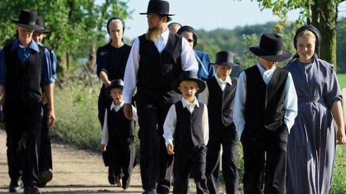 """The Lenawee County Health Department in Michigan has condemned a number of traditional """"old order"""" Amish family homes and is now asking a court to authorize the demolition of Amish property."""