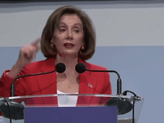 Nancy Pelosi tells United Nations Climate Change Conference to ignore President Trump
