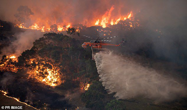 A firefighting helicopter tackles a bushfire near Bairnsdale in Victoria's East Gippsland region on New Year's Eve. Michael Truong is accused of trying to start a bushfire in the same region