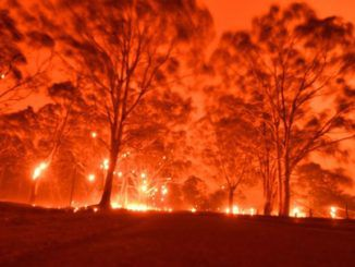 Australian authorities blame arsonists for bushfires, not climate change