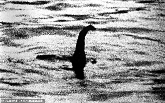 Some thought it a whale or a dolphin, while others joked it could be the famous Loch Ness monster (pictured, an image purported to be of the Loch Ness monster taken in 1934 by a vacationing London surgeon)