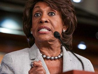 """Rep. Maxine Waters (D-CA) appeared on MSNBC Tuesday and admitted that """"average American"""" voters are not """"resisting Trump"""" and """"speaking out"""" against him."""