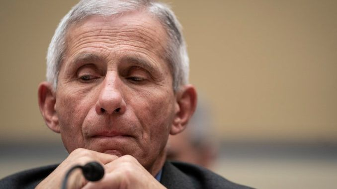 "During a forum on pandemic preparedness at Georgetown University in 2017, Dr. Anthony Fauci said Trump would ""definitely"" face a ""surprise"" infectious disease outbreak in the next few years."