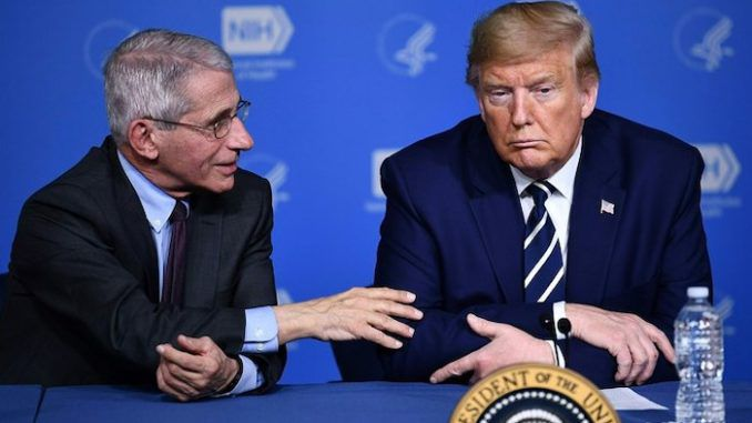 Dr. Anthony Fauci says USA is ahead of the curve on coronavirus thanks to President Donald Trump