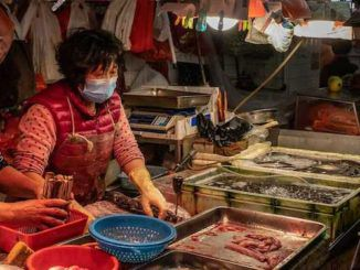Bloomberg publishes article heaping praise on China's wet markets