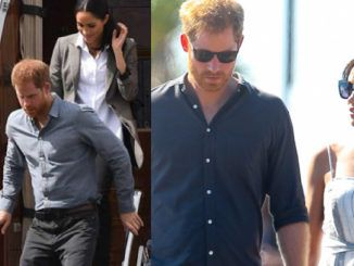 Climate change activists Prince Harry and Meghan Markle used a private jet to move from Canada to Los Angeles, according to reports.
