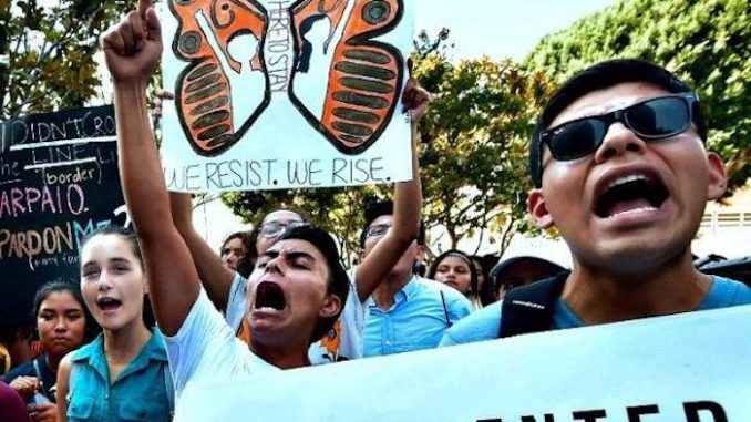 Supreme Court blocks President Trump's bid to end DACA for illegal aliens