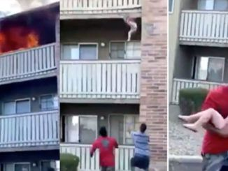 A former Marine and college wide receiver heroically saved the life of a 3-year-old boy by catching him after he was thrown from a burning building by his mother, dramatic cellphone footage shows.