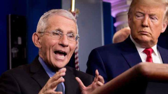 Anthony Fauci says independent spirit of Americans has harmed us during the pandemic