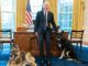 Biden and dogs