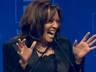 VP Kamala Harris cackles uncontrollably when discussing parents who can't afford good schools