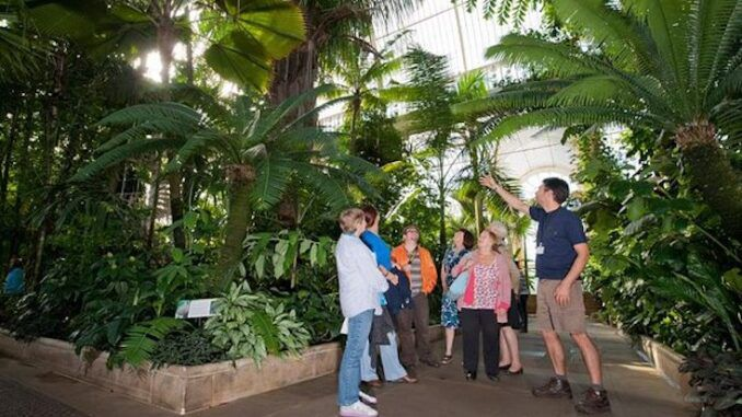 Kew Gardens to tell visitors how racists its plants really are