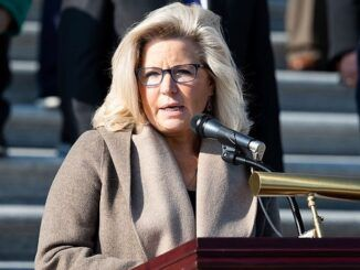 Rep. Liz Cheney says the election was not stolen from Donald J. Trump
