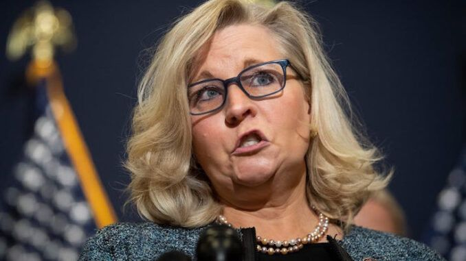 Ousted Liz Cheney plotting mid-term massacre to ensure Trump is never elected again