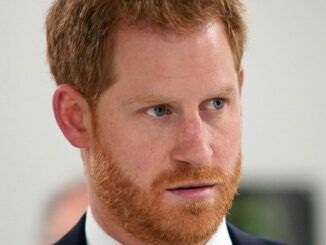 Prince Harry issues attack on Royal family, calls them bullies