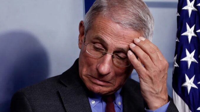 Calls mount for criminal investigation into Dr. Anthony Fauci