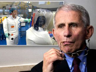 Feds launch investigation into US funding COVID lab in Wuhan