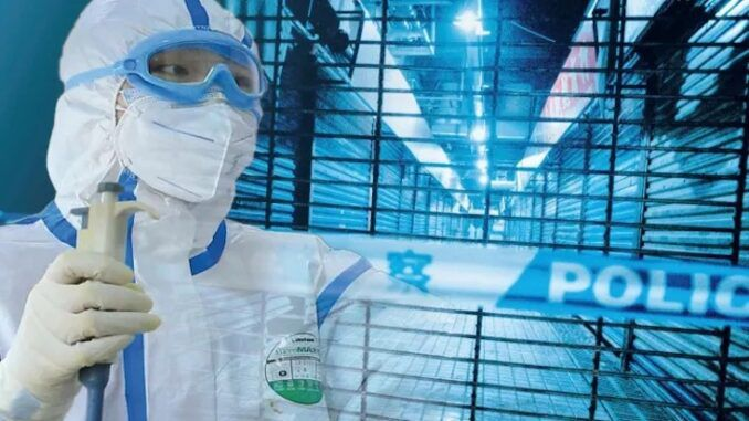 Majority of Americans believe COVID-19 virus came from Wuhan lab