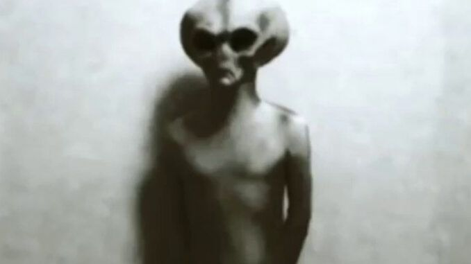 Australian government reports says U.S. government has known about cat-faced aliens for over 70 years