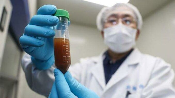 Wuhan scientists planned to release coronaviruses into Chinese bats 18 months before pandemic